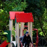 На детской площадке :: Владимир Кроливец