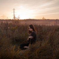 Field. :: Антон Лисниченко