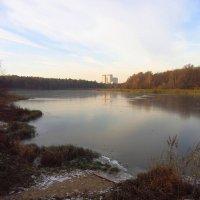 Лебедянский пруд встал - IMG_3700 :: Андрей Лукьянов