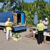 Лето в разгаре :: Владимир Фомин