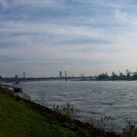 Rhein :: Witalij Loewin