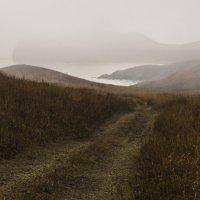 Туманность 3 :: Жанетта Буланкина