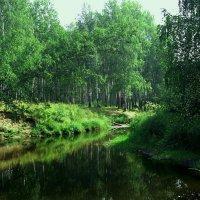 летние краски :: Константин Бабкин