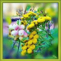 Осенний этюд на природе 1 :: Лидия (naum.lidiya)