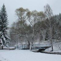 Первый снег 4 :: Надежда Егорова