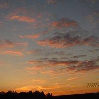 Солнце зашло :: Ольга ) ...
