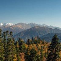 Осень в горах :: anatoly Gaponenko