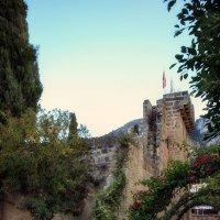 Аббатство Беллапаис, Северный Кипр :: Anna Lipatova