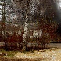 Маленький пожар-1. Фотографировала Саша. :: Весна .
