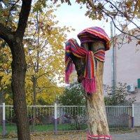 Готовимся к зиме :: Оксана Хорева
