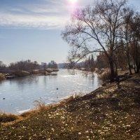 Канал Цны, Тамбов :: Виктор