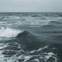 Море пенится, волны катятся... :: Людмила