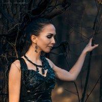 Atom WOOD :: Nina Zhafirova
