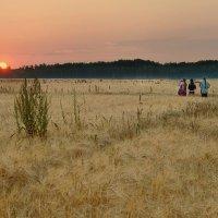 Здесь жизнь встречает солнца свет... :: Ирина Данилова