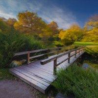 Осень в японском саду :: Дак9 -