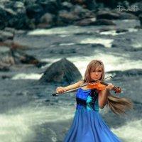 Скрипка :: Татьяна Титова