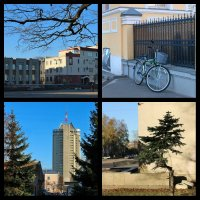 Прогулка по городу (коллаж) :: Angelika Faustova