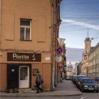 Петербург :: ник. петрович земцов
