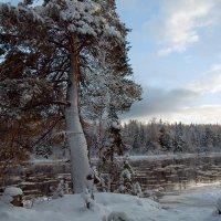 Северный Урал... :: Марат Шарипов