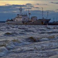 Выборгский залив :: Irina Gorbovskaya