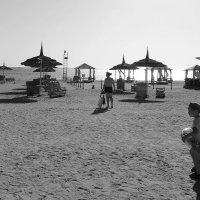 Пляж утром :: Андрей Козов