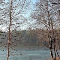 Прозрачный воздух осени :: Лидия (naum.lidiya)