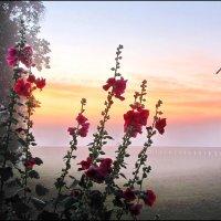 Рассвет в Кидекше. :: Ирина Нафаня