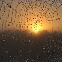 Чарующий восход. :: Ирина Нафаня