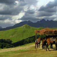 На перевале Анчхо :: Светлана Юрьевна