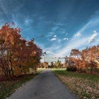 Осень :: Lasc1vo Артёмин