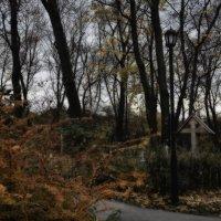 Храм Осени возвышенно печален ...  Замедленность, величие, покой ... :: Ирина Данилова