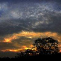 Причуды небес последнего рассвета октября...2. :: Андрей Войцехов