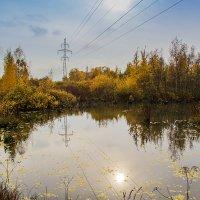Мини-озеро) :: Денис Бажан