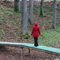 Осень :: Mariya laimite