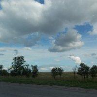 В дороге :: Svetlana Baklykova