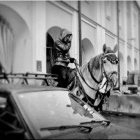Припарковались! :: Владимир Шошин