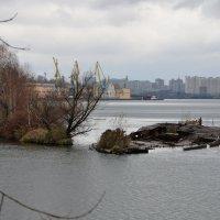 Затопленная баржа. :: Oleg4618 Шутченко