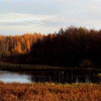 осень :: Ulya Kraiko