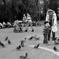 В парке без Ленина, Кировоград :: Тарас Леонидов