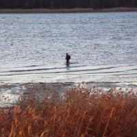 Одинокий рыбак...-2. :: Фотогруппа Весна.