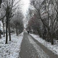 между осенью и зимой :: gribushko грибушко Николай