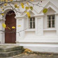 Из года в год, на этом самом месте,  приходят к нам спокойствие и грусть :: Ирина Данилова