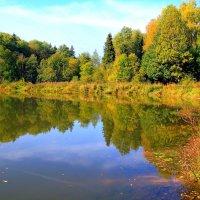 Осенний пруд :: Тамара