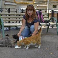 Коты и...Кошки :) :: Елена Шторм
