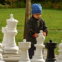 Шахматист :: Evgenij Schleinikov