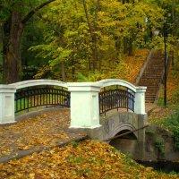 Осенний парк :: Сергей Карачин