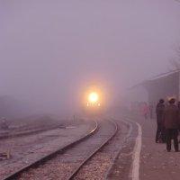 Поезд пребывает из Питера... :: Владимир Павлов