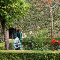 Садовник Альхамбры :: Анастасия Богатова