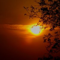 осенний закат... :: Алёна Филатова