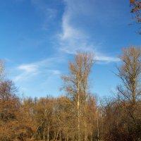Солнечный октябрь :: Дмитрий Графов